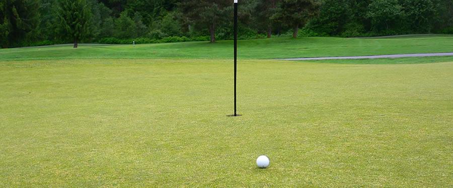 Optimized Golf Foursome Pairings -- minimum repeats