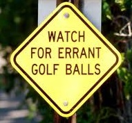 Errant Golf Ball Analysis for Golf Course Safety